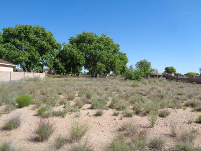 Valencia County Residential Lots & Land For Sale: 121 San Lucas Avenue