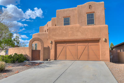 Bernalillo Single Family Home For Sale: 1244 Goodwin Drive