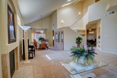 Albuquerque Single Family Home For Sale: 8000 Oso Rico Road NE