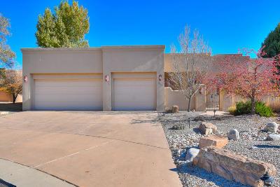 Placitas, Bernalillo Single Family Home For Sale: 309 Plaza Muchomas
