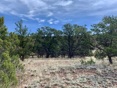 Catron County Residential Lots & Land For Sale: 161 Homestead Subdivision Trail