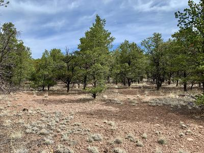 Catron County Residential Lots & Land For Sale: 162 Homestead Subdivision Trail