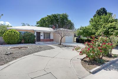 Albuquerque Single Family Home For Sale: 2028 Palomas Drive NE