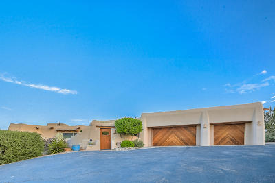 Placitas Single Family Home For Sale: 166 Camino Barranca