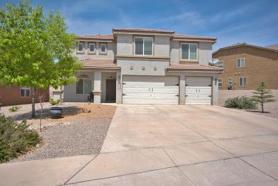 rio rancho Single Family Home For Sale: 2509 Camino Seville SE