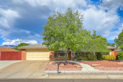 Single Family Home For Sale: 6118 Pueblo Verde NE