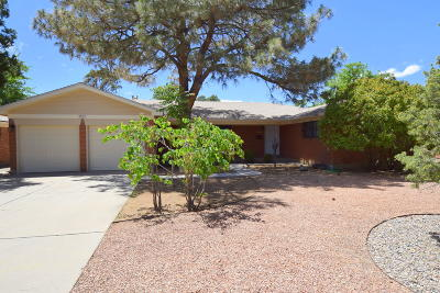 Bernalillo County Single Family Home For Sale: 2821 San Pablo Street NE