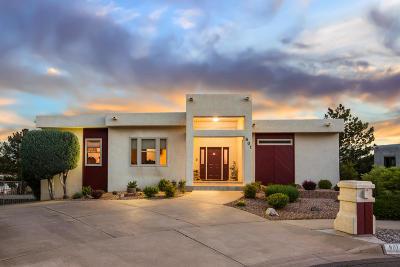 Albuquerque Single Family Home For Sale: 801 Piedra Larga Place NE