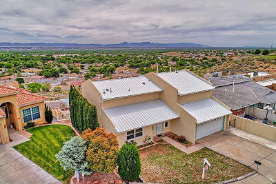 Albuquerque Single Family Home For Sale: 520 La Bajada Court NW