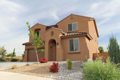 rio rancho Single Family Home For Sale: 3419 Llano Vista Loop NE
