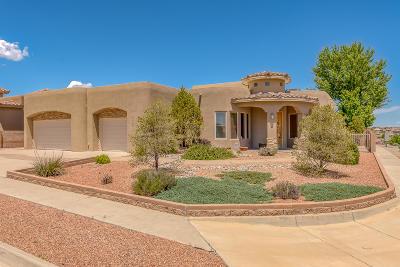 Albuquerque Single Family Home For Sale: 4601 Arlington Avenue NW