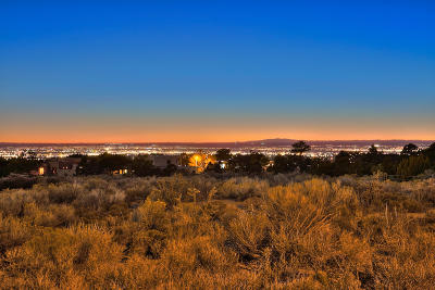 Albuquerque Residential Lots & Land For Sale: 4915 Cresta Del Sur Court NE