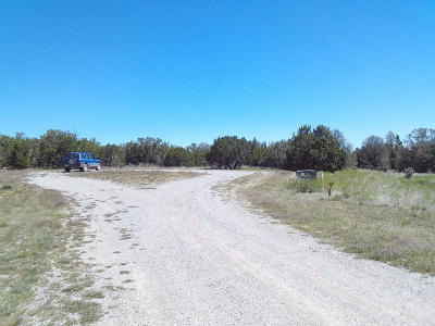 Torrance County Residential Lots & Land For Sale: 00 High Vista Court