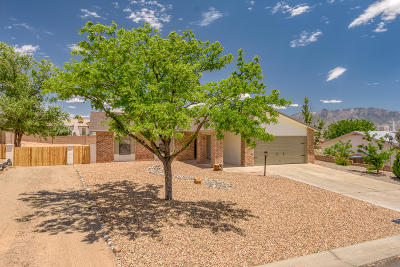 Rio Rancho Single Family Home For Sale: 4725 Gypsum Drive NE