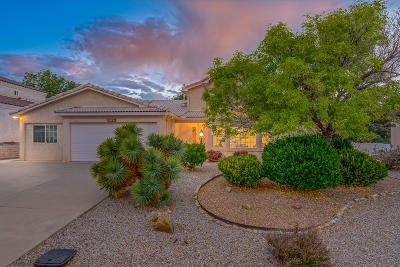 rio rancho Single Family Home For Sale: 3125 Ashkirk Loop SE