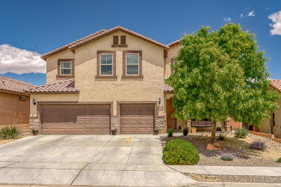 rio rancho Single Family Home For Sale: 208 Valle Alto Drive NE