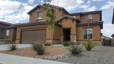 Albuquerque Single Family Home For Sale: 9508 Big Rock Drive NW