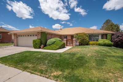 Albuquerque Single Family Home For Sale: 9100 Freedom Way NE