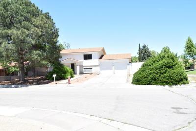 Single Family Home For Sale: 6523 Martin Court NE