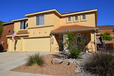 Los Lunas Single Family Home For Sale: 1160 Carrizo Street NW