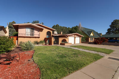 Albuquerque Single Family Home For Sale: 2905 Indiana Street NE