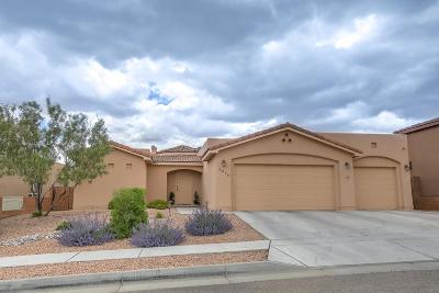 Albuquerque Single Family Home For Sale: 5016 San Adan Avenue NW