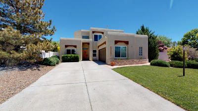 rio rancho Single Family Home For Sale: 3569 Calle Suenos SE