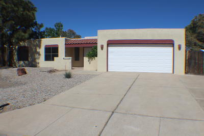 Albuquerque Single Family Home For Sale: 10308 Rempas Drive NW