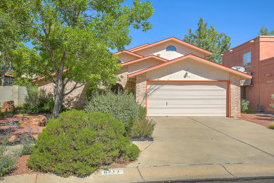 Albuquerque Single Family Home For Sale: 6717 Gleason Avenue NW