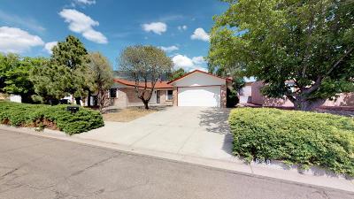 Albuquerque Single Family Home For Sale: 1628 Cullen Lane NE