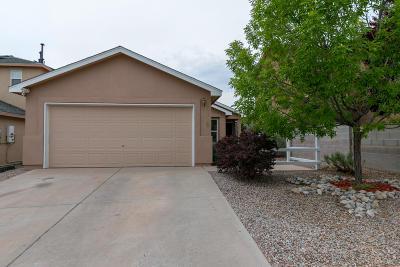 Albuquerque Single Family Home For Sale: 6112 Malpais Park Avenue NW