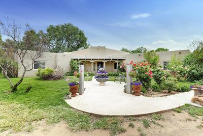 Albuquerque Single Family Home For Sale: 111 Fresquez Lane NE