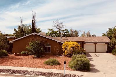 Albuquerque Single Family Home For Sale: 10306 Theresa Place NE