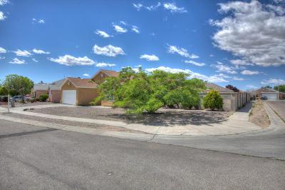 Albuquerque Single Family Home For Sale: 8716 Lone Prairie Avenue SW