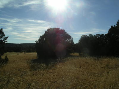 Edgewood NM Residential Lots & Land For Sale: $70,000