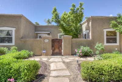 rio rancho Single Family Home For Sale: 2920 Trevino Drive SE