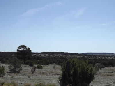 Tijeras Residential Lots & Land For Sale: Gallegos Road
