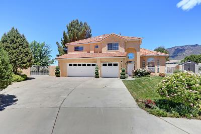 Albuquerque Single Family Home For Sale: 12041 Caribou Avenue NE