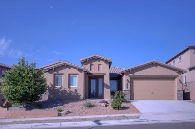 Albuquerque Single Family Home For Sale: 7324 Two Rock Road NW