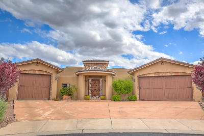 Rio Rancho Single Family Home For Sale: 3208 Greystone Court SE