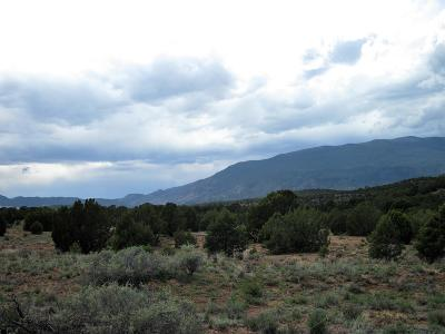Tijeras Residential Lots & Land For Sale: 430 Forest Road