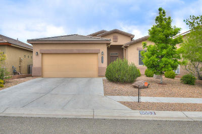 Albuquerque Single Family Home For Sale: 6553 Cliff Dweller Road NW