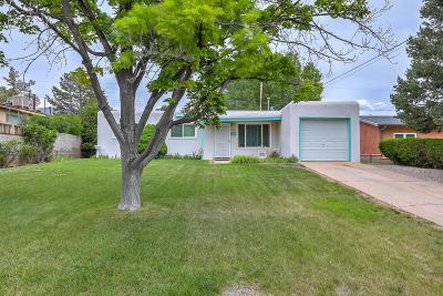 Albuquerque Single Family Home For Sale: 1508 Morris Street NE