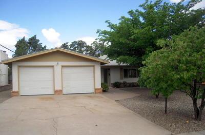 Albuquerque Single Family Home For Sale: 915 Chama Street NE