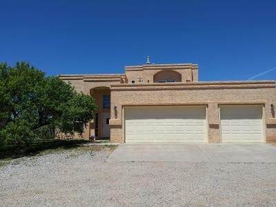 Tijeras, Cedar Crest, Sandia Park, Edgewood, Moriarty, Stanley Single Family Home For Sale: 711 Tierra Alegre Court