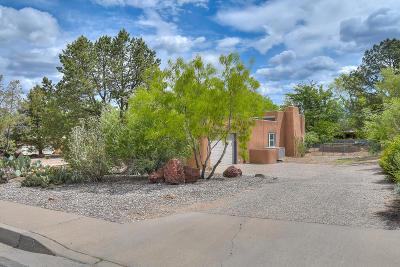 Albuquerque Single Family Home For Sale: 1320 Dakota Street SE