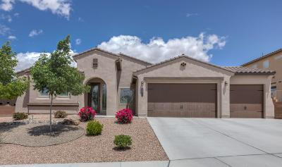 Rio Rancho Single Family Home For Sale: 2811 Picea Lane SE
