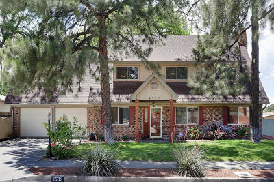Bernalillo County Single Family Home For Sale: 4509 Dona Marguerita Avenue NE