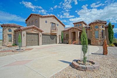 Rio Rancho Single Family Home For Sale: 3436 Kafka Road NE