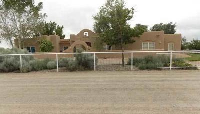 Los Lunas Single Family Home For Sale: 712 Pheasant Lane SW